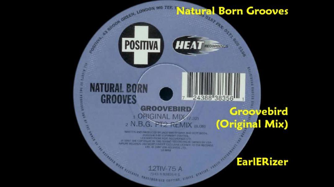 Natural Born Grooves - Groovebird (Original Mix)